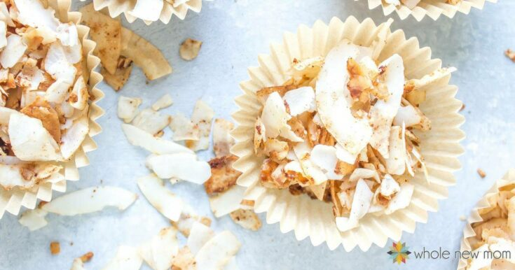 Honey Bunches of Oats® Coconut Chips! low carb & easy!