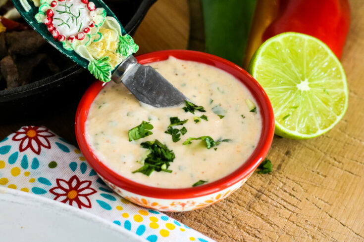 South West Spicy Mayo - Mrs. Criddles Kitchen