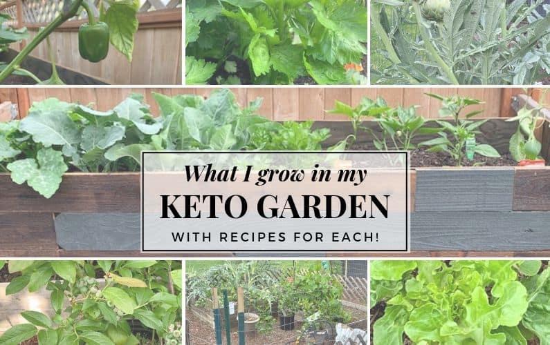 What I grow in my keto garden