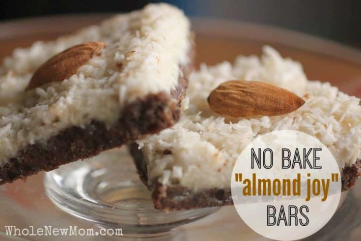 No Bake Healthy Almond Joy Bars! low-carb, vegan, AIP