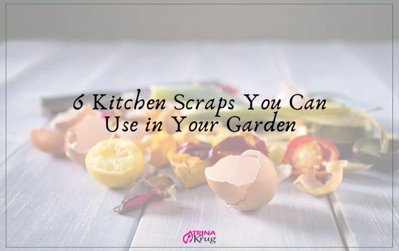 6 Kitchen Scraps You Can Use in Your Garden